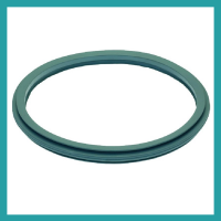 Gaskets for Wascator, Ipso, Primus, Electrolux Professional